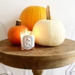 Diptyque-Baies-Jar-Candle