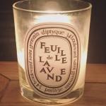 Diptyque-Feuille-de-Lavande-Scented-Jar-Candle
