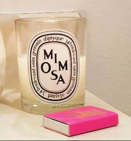 Diptyque-Mimosa-Candle-Review