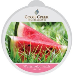Goose-Creek-Watermelon-Patch-Wax-Tart-1