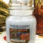 Yankee-14oz-Crisp-Morning-Air-Candle