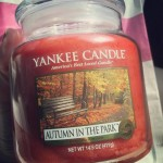 Yankee-Autumn-in-the-Park-14oz-Candle