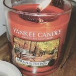 Yankee-Autumn-in-the-Park-Jar-Candle