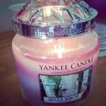 Yankee-Medium-Silver-Birch-Jar-Candle