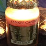 yankee-silver-birch-scented-candle-review-2