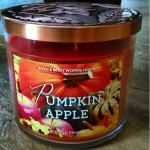 Bath-Body-Works-Pumpkin-Apple-Scented-Candle-1