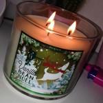Bath-Body-Works-Vanilla-Bean-Noel-Jar-Candle-1