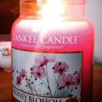 Yankee-22oz-Honey-Blossom-Scented-Candle-1