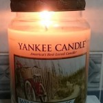 Yankee-22oz-Wild-Sea-Grass-Scented-Candle-2