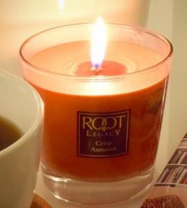 Root-Candle-Crisp-Autumn-Jar-Candle-1