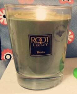 Root-Candle-Hosta-Scented-Candle-1