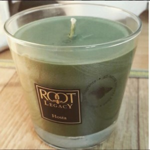 Root-Candle-Hosta-Scented-Candle-2