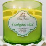 Bath-Body-Works-Eucalyptus-Mint-Scented-Candle-Review-3