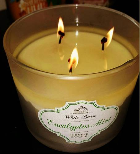 Bath Amp Body Work Eucalyptus Mint Candle Reviews Candle Frenzy