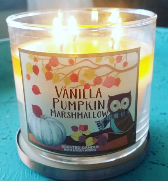 bath-body-works-vanilla-pumpkin-marshmallow-scented-candle-3