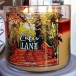 bath-body-works-cider-lane-scented-candle-1