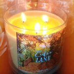 bath-body-works-cider-lane-scented-candle-2