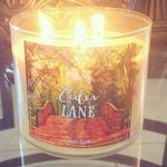 bath-body-works-cider-lane-scented-candle-4