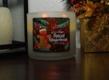 bath-body-works-spiced-gingerbread-scented-candle-review-4