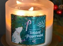 Bath-Body-Works-Twisted-Peppermint-Candle-Scent-1