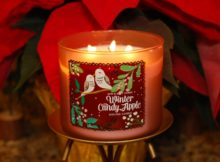Bath-Body-Works-Winter-Candy-Apple-Scented-Candle-2
