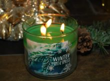 Bath-Body-Works-Winter-Mint-Spruce-Scented-Candle-3