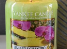 Yankee-Pineapple-Cilantro-Scented-Candle-Review-star