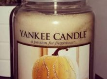 Yankee-Sugared-Pumpkin-Swirl-Scented-Candle-Review-Photo2